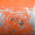 WallaceK_Orange-5
