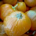Olympus150_Oct2011_021