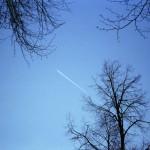 LeicaMini_Dec2011_023