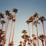 Olympus_Epic_2012_California_029
