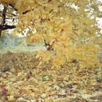 CanonWP1_Nov2012_018