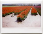 InstaxWide_April2014_003