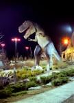Niagara_CanonQL17_CineStill_May2014_024