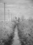 SonyDSCV3_infrared-04907