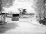 SonyDSCV3_infrared-04926