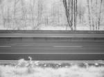 SonyDSCV3_infrared-05013