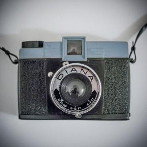 DianaThumb-9725